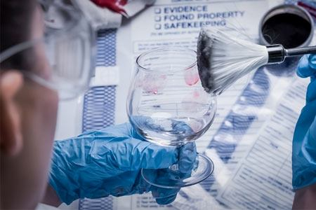 What Forensic Science Career Is Right For You Learn